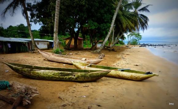 Cayucos en arenas blancas, construidos con un solo tronco de una pieza